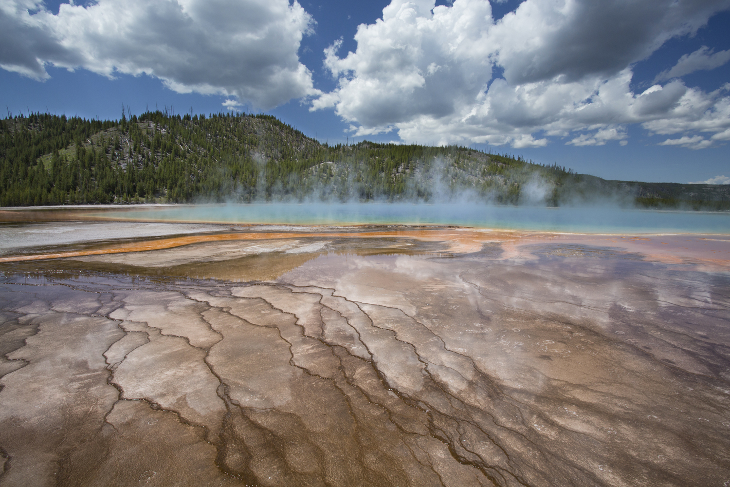 Yellowstone.Spring_JM_49