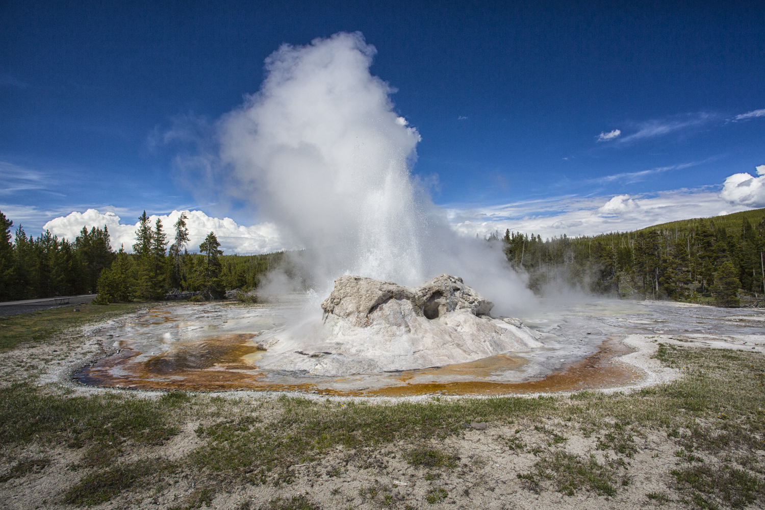 Yellowstone.Spring_JM_7