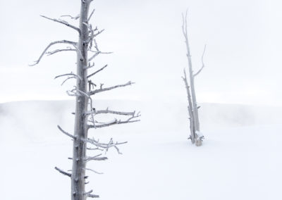 Yellowstone.Winter_JM_4